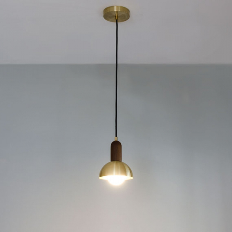 Brass and Walnut Light